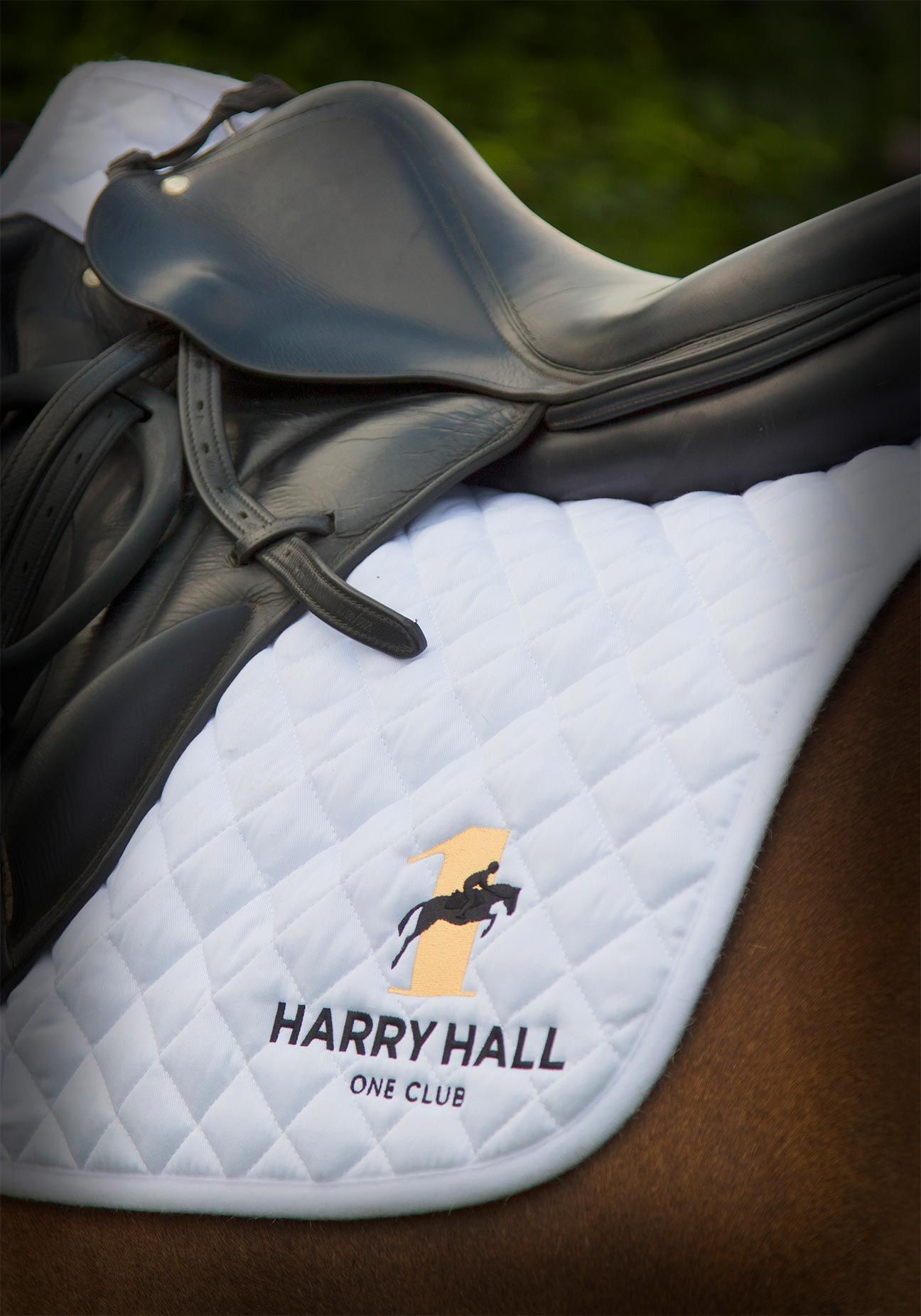 Harry Hall Saddle